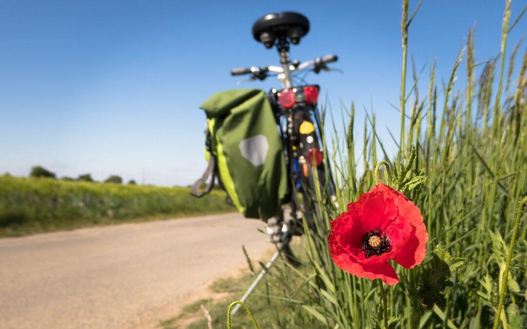 Avviso selezione modelli di governance Bikefriendly